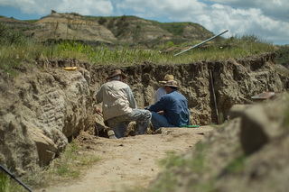 Members of a CRS iDINO excavation teams search for dinosaur specimens in the Hell Creek Formation of eastern Montana